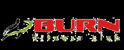 Logo_Burn_Fitness_Capoeira_Cluj